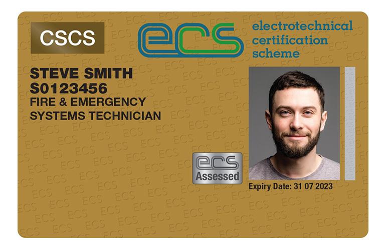 FESS-ECSCards-20